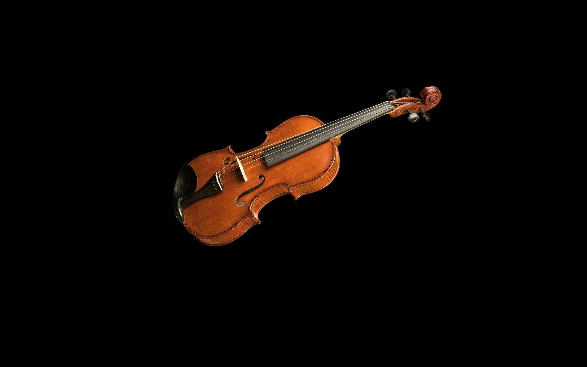 Violine mieten